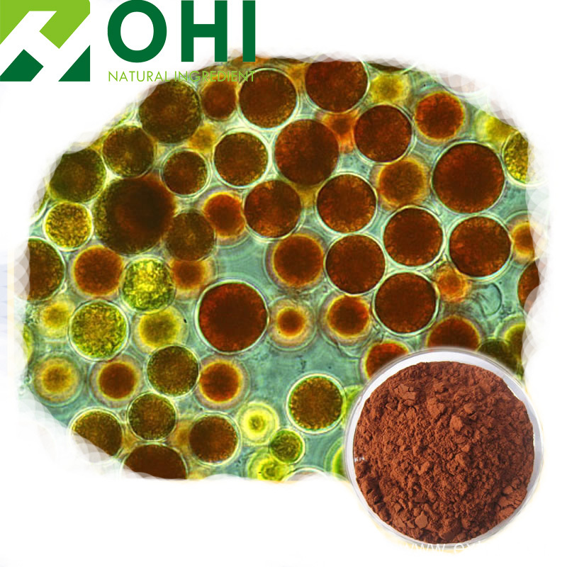 high quality Haematococcus Pluvialis Extract