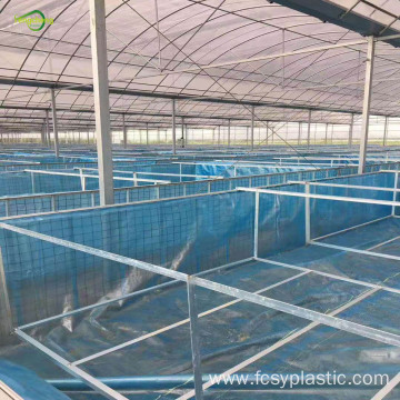 woven blue transparent fish pond