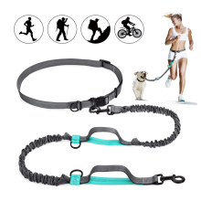 Hands Free Dog Leash