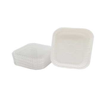 Food Containers Disposable Plastic Lunch Box