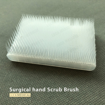 Single Use Hand Scrub Brush With Handle