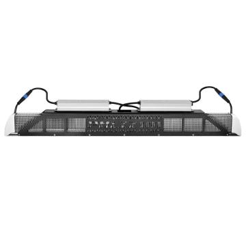 Neueste Samsung LM301b 6000K Vollspektrum Phlizon LED