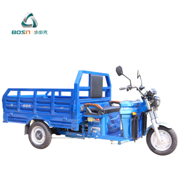 adult 3 wheel heavy loading electric motorcycle