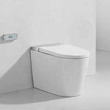 Two Piece Intelligent Toilet