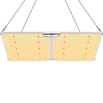 Best LED Grow Light for Greenhouses Agricultural