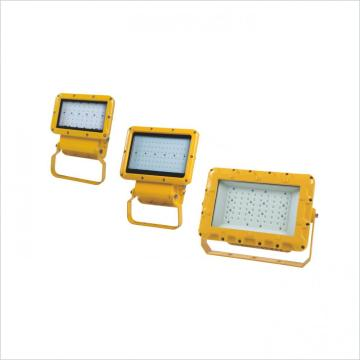 Outdoor LED Flood Lights Thick Aluminum