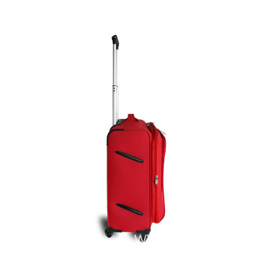 Carry On 4-Wheel Spinner Luggage