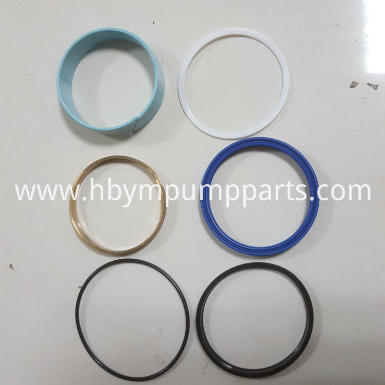 Putzmeister Seal Kits for Plunger Cylinder(Big S Valve)
