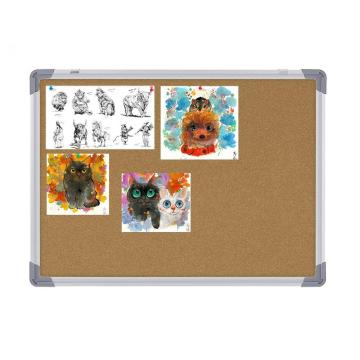 Wholesale Notice Cork Board with Pins for Classrom