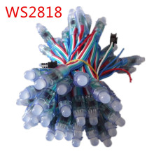 50pcs DC5V 12mm F8 WS2818 addressable LED Pixel Module Light IP68 waterproof LED String one bad node does not affect the others