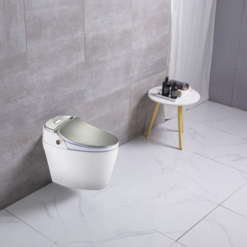 One Piece Sliver color Floor mounted Smart Toilet