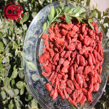 Increase calcium absorption lose weight goji berries