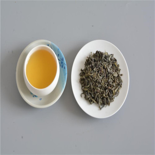 Chinese green tea top chunmee to morocco market