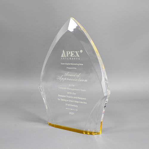 APEX Encouragement Gift Acrylic Award Plate Manufacturing