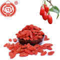 Nutrient-Rich Superfood Goji Berries Raw Organic