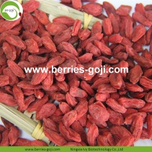Wholesale Nutrition Healthy Low Pesticide Goji Berries