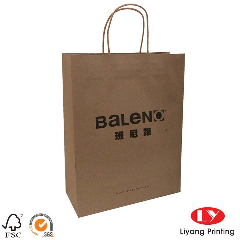 Twist kraft paper bag 031906
