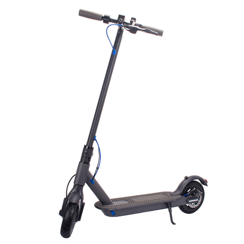 350w Powerful Motor Electric Adult Scooter
