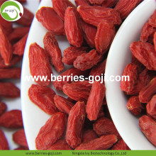 Lose Weight Nutrition Fruit Package Conventional Goji Berry