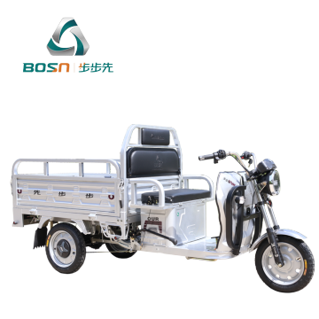 Cargo E Tricycle Electric Loading Rickshaw