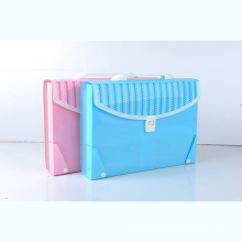 Variety of cute organ bag