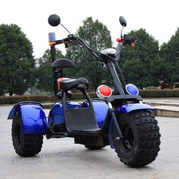 Three Wheel Off Road Electric Scooter for Adult