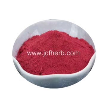 Beta Vulgaris Extract Powder Beet Root Extract