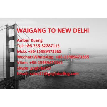 Shanghai Waigang Sea Freight to India New Delhi