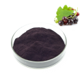 ISO standard High Quality Anthocyanin Black Currant Extract powder