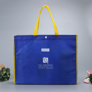 non-woven Cloth Rpet Shopping Bag