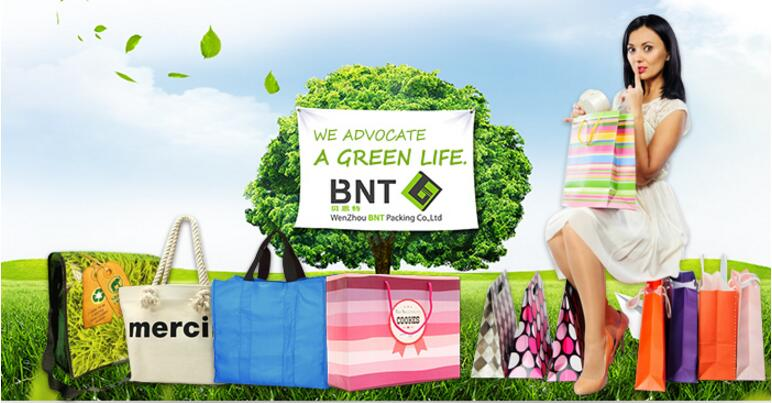 non woven eco bag supplier
