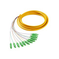 SC APC 12 Cores Fiber Optic Bundle ​Pigtail