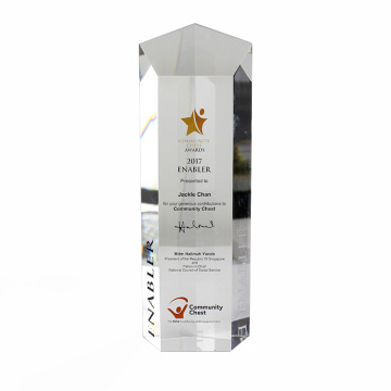 APEX Clear Custom Gift Acrylic Trophy Block