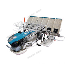 Walking Type Hand Transplanter Machine Agriculture Paddy