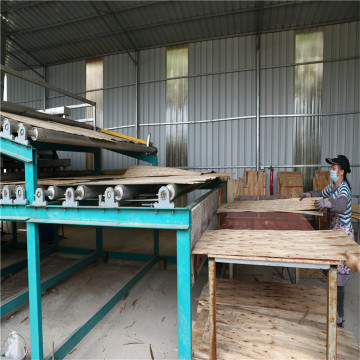 New Type Biomass Veneer Dryer