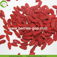 Factory Supply Healthy Fruit Products Bulk Goji