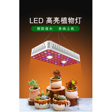 Cob LED Full Spectrum 1000W Grow Light