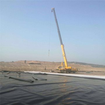 Blue Fish Pond Liner Plastic HDPE Geomembrane Price