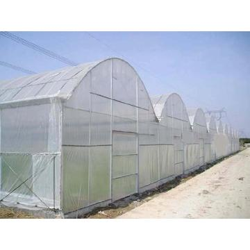 Anti inect fly netting