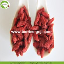 Factory Supply Fruit Red Package Goji Berries