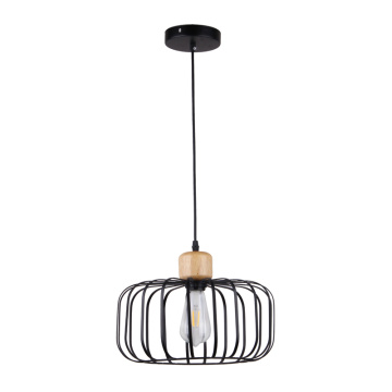 Simple Interior Metal Pendant Hanging Decorative Light