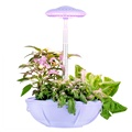Eramudeli UFO-kuju Intelligentsed istutusdioodid Grow Light