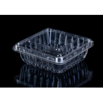 Clamshell plastic box with blueberry