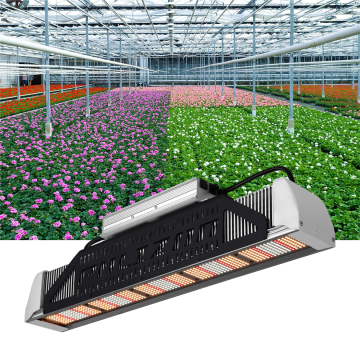Horticulture LED Grow Light for Medical Plants