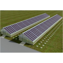 Solar energy storage greenhouse greenhouse