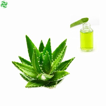 Supply Latex Raw Materials Aloe oil Base Oil