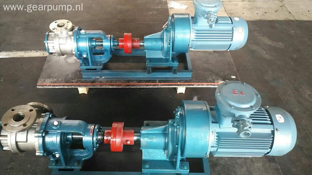 NYP high viscous stainless steel sugar syrup pumps