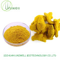 Nature Turmeric Extract Curcumin 95% Powder