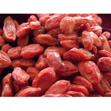 Bio dried red berries/Low moisture Goji Berry