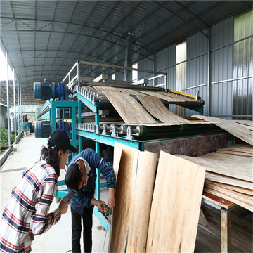 Roller Veneer Dryers Machine Line